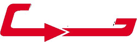 DizLine - диагностика легковых и грузовых автомобилей, чип-тюнинг, удаление сажевого фильтра, EGR в Молодечно